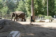 20.08.20 - Tierpark 1