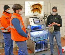 05.02.21 - Biomonitoring im LWG-Wasserwerl